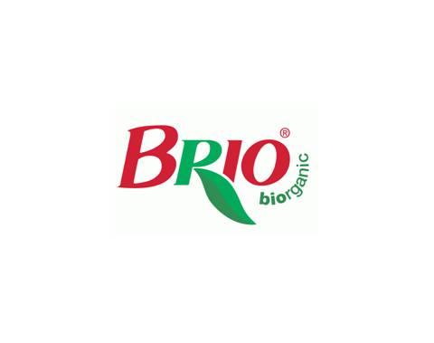BRIO FRANCE