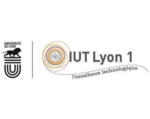 IUT LYON 1 - DÉPARTEMENT TECHNIQUES DE COMMERCIALISATION