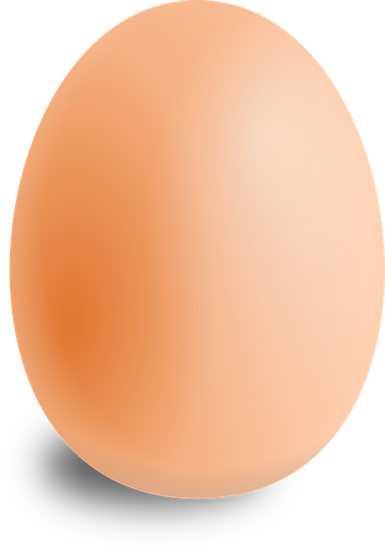 egg-157224_960_720.png