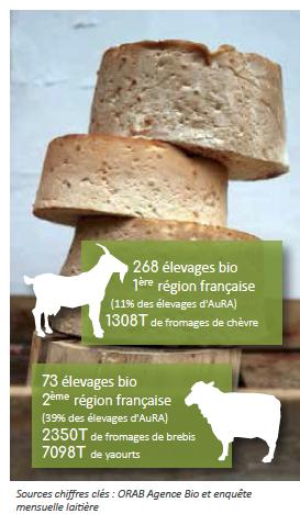 Schéma - Quelle saisonnalité pour le fromage de chèvre bio ?