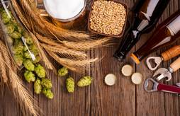 Journée régionale filière brassicole bio
