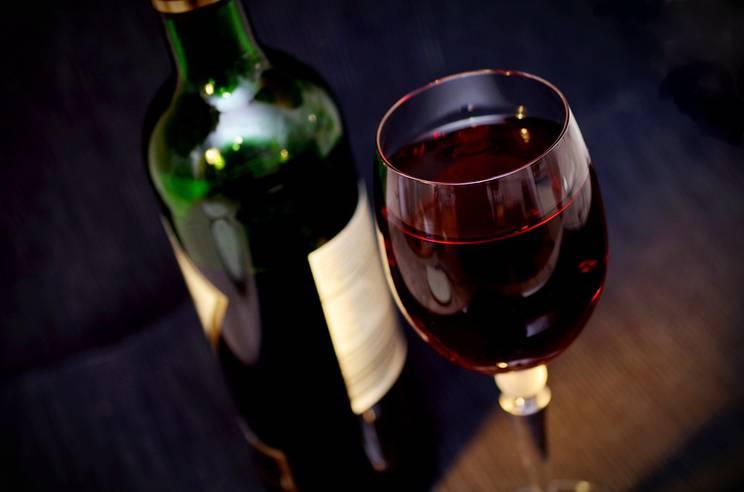 Cluster Bio - Filières vins bio 2