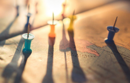 Formation :Construire sa stratégie à l'international pour sa marque bio, les bases de l'export