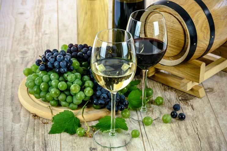 Cluster Bio - Filières vins bio 3